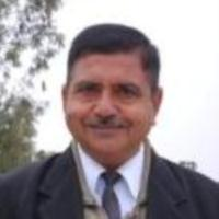 Madan Gopal Dasaur Lawyer